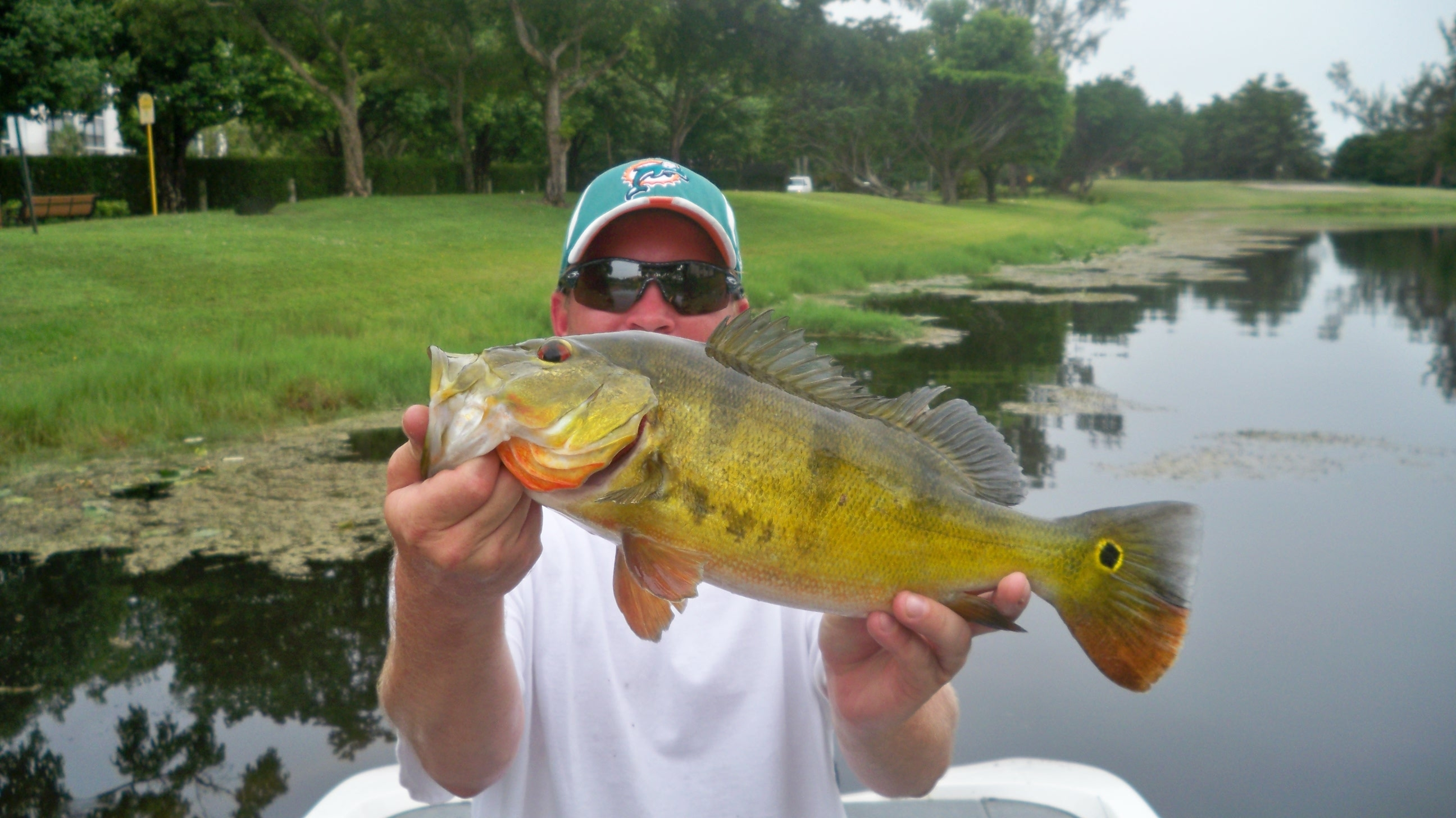 Freshwater fish of florida - Freshwater Fishing Report South Florida 7 10 2009
