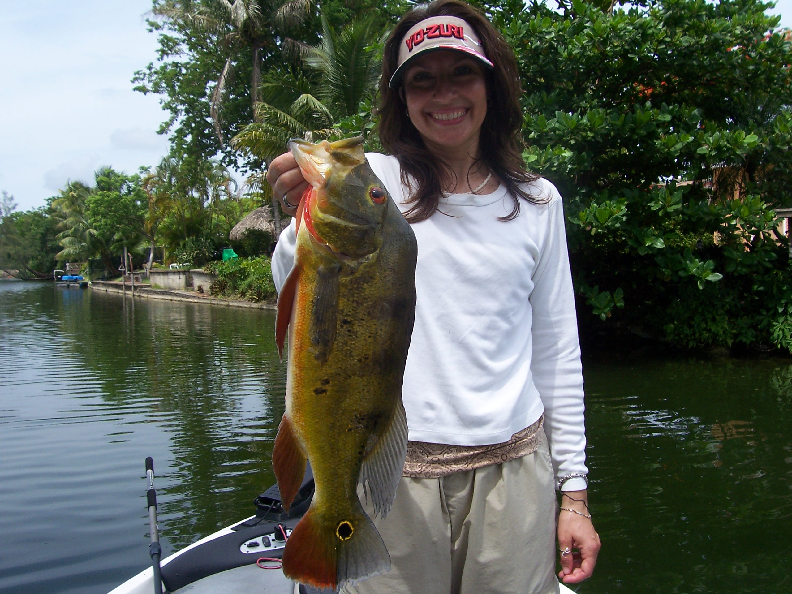 South florida bass fishing reports blog peacock bass for South florida fishing