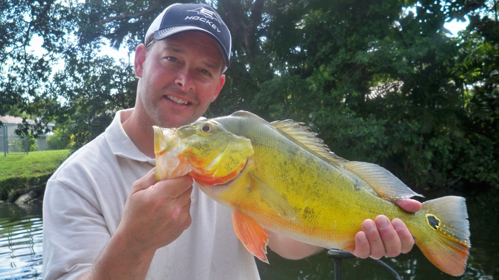 Mike Joyce From Boston And A Nice 4 Pound Butterfly Peacock Bass